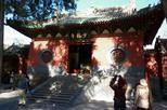 Private Luoyang Day Tour Longmen Grottoes and Shaolin Temple-No Shopping Stops
