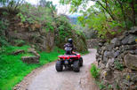 Mt etna off road quad bike in taormina 342733