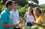 Boutique Wineries Wine and Tapas Small Group Tour
