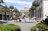 Private horse drawn carriage tour in savannah 193503