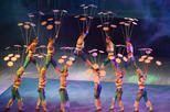 Beijing Night Tour Of Acrobatics Show Including Private Transfer