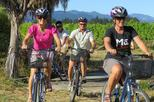 Deluxe Full-Day Marlborough Wine Region Guided Bike Tour