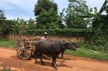 2 Hour Buffalo Cart Ride around Siem Reap