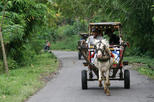 Private Tour: Full-day Sasak Tour and Horse Cart Riding