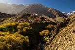 3 Valleys Day Trip from Marrakech with Lunch