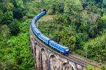 Day tour to Ella with Famous train journey & tea factory and plantation