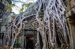 Angkor Wat 1Day Tour With Sunrise