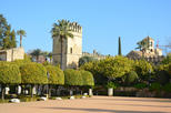 3 Hour Cordoba Monuments Walking Tour