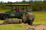 2-Hour Guided Game Drive at Kragga Kamma Game Park