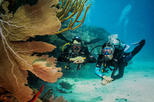 Double dive package in Playa del Carmen - Scuba dive in the Mexican Caribbean