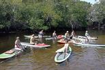 Island City ECO Paddle and Lesson