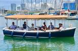 Hawaii Electric Boat Tours   Harbor and Canal Tour