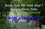 Dunns River Falls Day Trip from Falmouth with Optional Tubing or Rafting