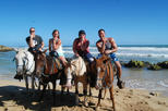 HorseBack Riding and Swim from Falmouth (Shore excursions)