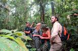 4-Day Wildlife Adventure in Pacaya-Samiria Reserve from Iquitos with Amazon Explorer