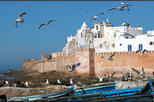 1 Day Essaouira excursion from Marrakech