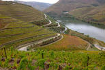 DOURO VALLEY FULL DAY WINE EXPERIENCE