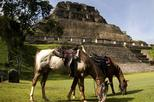 Horseback Riding Tour to Xunantunich