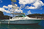 All-Inclusive Inshore or Offshore Fishing Day Trip in Costa Rica aboard DREAM ON