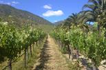 full day private wine tour casablanca valley