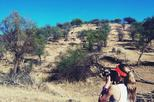 Small-Group Tour: Morning Hike at Daan Viljoen Reserve from Windhoek