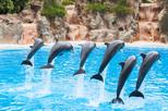 Aqualand and Dolphinarium 1-Day Ticket
