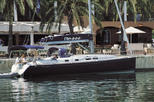Whale and Dolphin Watching Luxury Private Yacht Tour