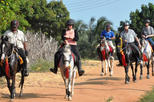Evening Horse Riding Experience in the Countryside