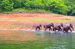 Private 5 Days Fabulous Kerala Tour from Coimbatore