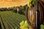 Private full day Wine Tour with Tasting From Mumbai