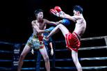 Chiang Mai Boxing Stadium Admission Ticket