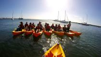 Birthday Wave Break Island Kayak Tour from the Gold Coast, Gold Coast, Kayaking & Canoeing