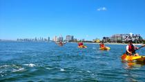 Wave Break Island Kayak and Snorkeling Tour from the Gold Coast, Gold Coast, Kayaking & Canoeing
