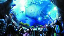 Skip the Line: Hong Kong Ocean Park Admission Ticket, Hong Kong, Attraction Tickets
