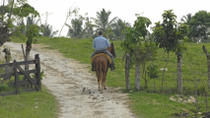 La Palmeraie or Lalla Takerkoust Lake Horse Riding Tour from Marrakech Including Lunch, Marrakech,...