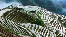 2-Day Private Tour: Classic Li River Cruise and Longji Terrace Tour, Guilin