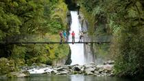 Half-Day Milford Track Guided Walk, Te Anau, Hiking & Camping