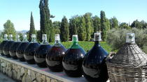 Private Half-Day Tour Wine Tasting St Jeanet and St Paul Village from Nice, Nice, Private...