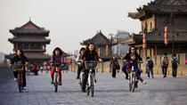 2-Day Classic Xi'an Tour: Terracotta Warriors and Downtown Sightseeing, Xian