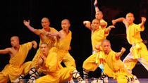 Luoyang Private Day Tour: Shaolin Temple, White Horse Temple and Longmen Grottoes, Luoyang