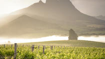 Vine Hopper: Hop-On Hop-Off Wine Tour - Northern Route, Stellenbosch, Hop-on Hop-off Tours