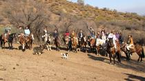 Full-Day Horseback Riding in Cajón del Maipo, San Ramón, Laguna de Aculeo and ...