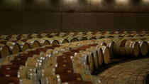 Private Wine Tour - Lujan De Cuyo, Mendoza, Wine Tasting & Winery Tours