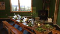 Northern Lights Experience and Cabin Dinner, Fairbanks