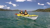 Half day Guided Sea Kayak Tour from Picton, Picton, Kayaking & Canoeing