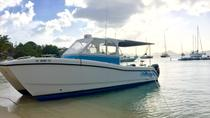 Private Customized Powerboat Charter from St Thomas, St Thomas, Day Cruises