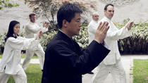 Full-Day Tai Chi Tour in Beijing, Beijing