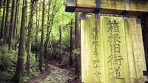 Walking Tour Along a Medieval Road in Hakone and Odawara, Tokyo, Walking Tours
