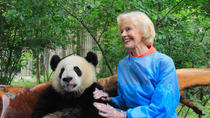 Private One Day Panda Volunteer Work at Chengdu Giant Panda Breeding Research Base in Dujiangyan, ...