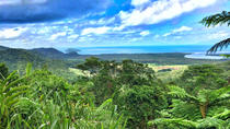 Private Day Tour from Cairns Including Daintree Rainforest National Park, Cape Tribulation and...